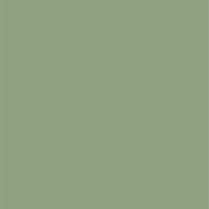 591 Oliivi